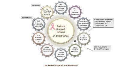Nytt steg mot enda bedre brystkreftbehandling